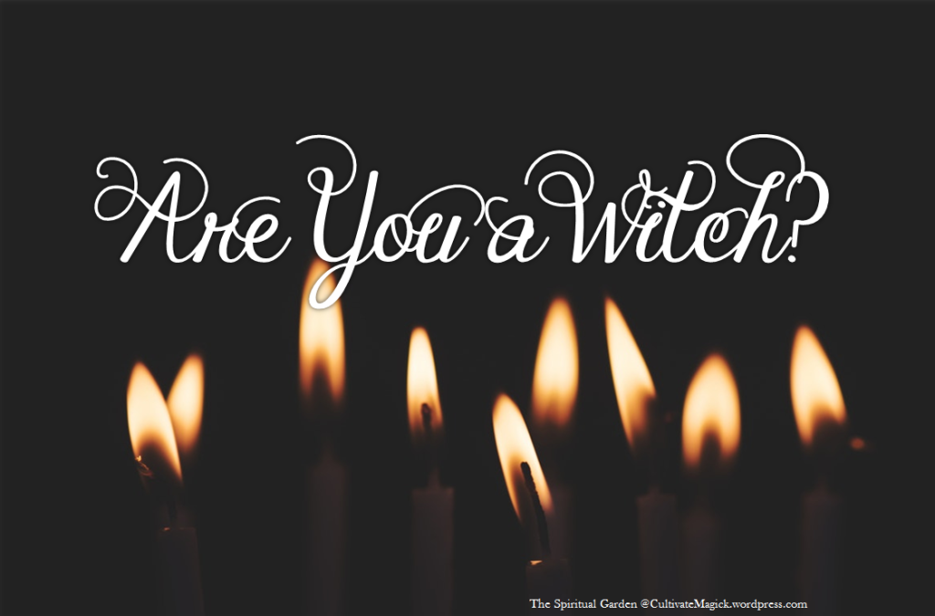 are-you-a-witch-header-image.png?w=1024